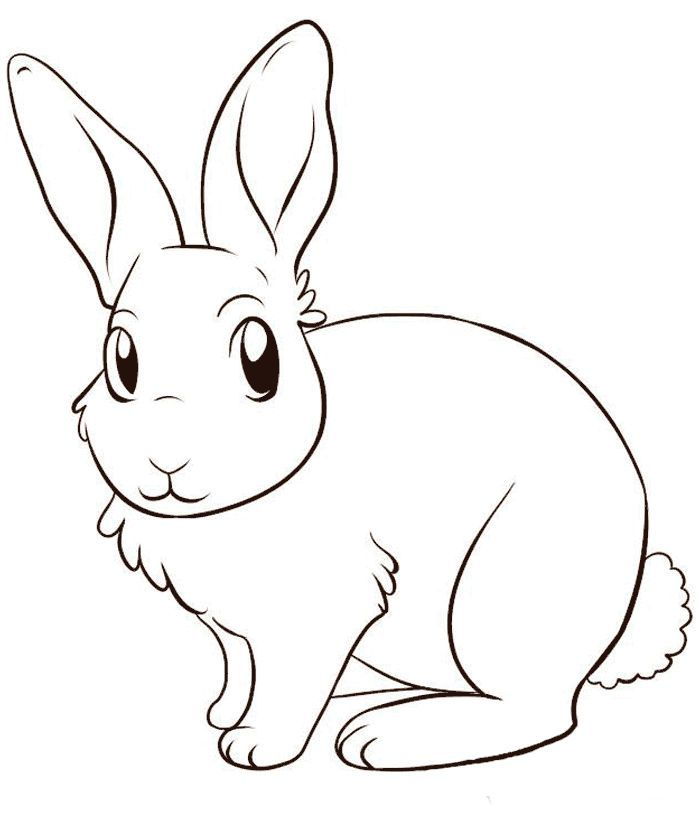 Bunny Rabbit Coloring Pages In 2020 Bunny Coloring Pages Bunny Drawing Animal Coloring Pages