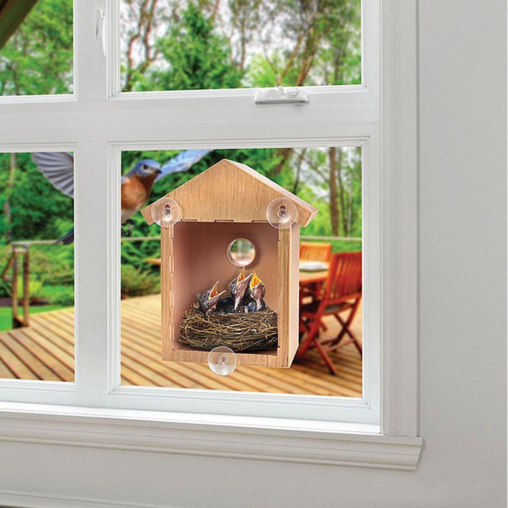 Pin By Paau Villalba On Terrarios In 2020 Bird Houses Bird House Chicken Nesting Boxes