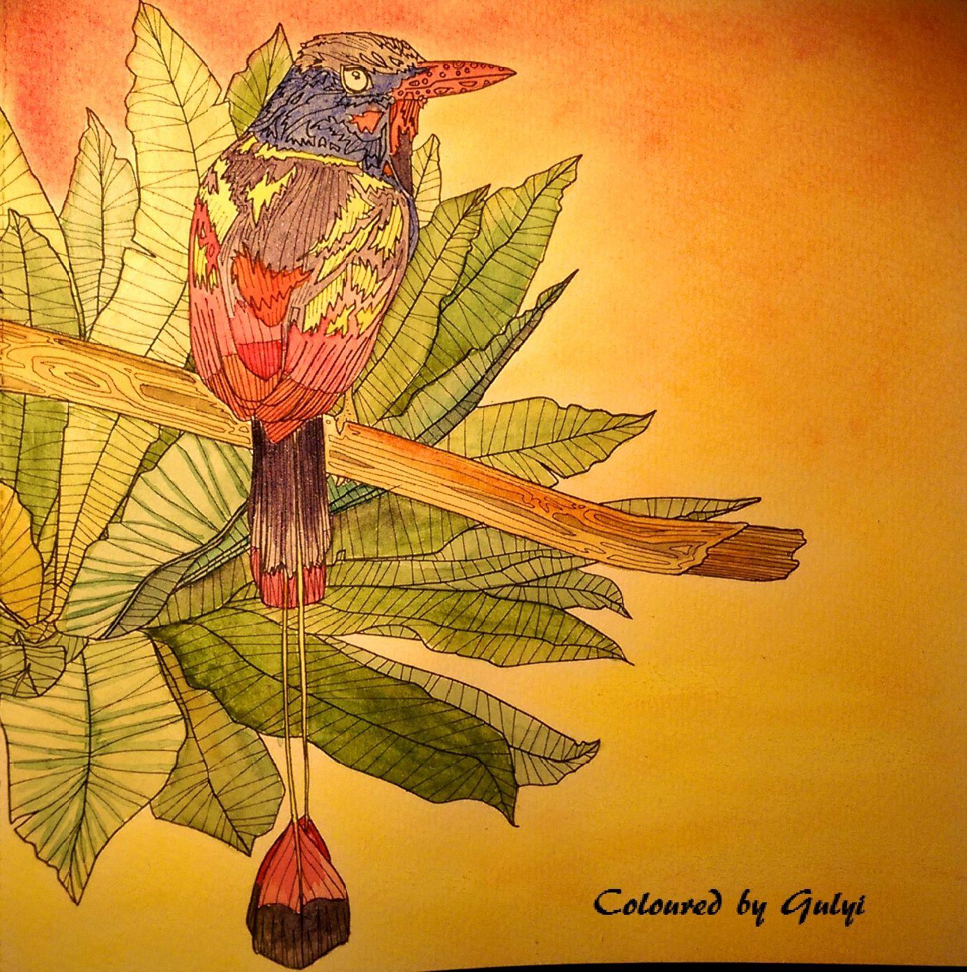 Rainforest Escape by Jade Gedeon #rainforestescape #jadegedeon ...