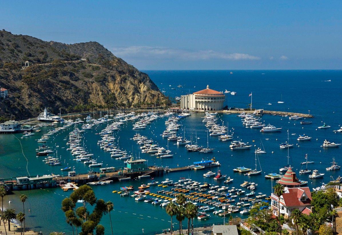Santa Catalina Island, California Catalina island, Santa