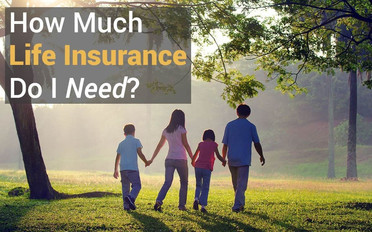 Life Insurance How Much And What Type To Own With Images