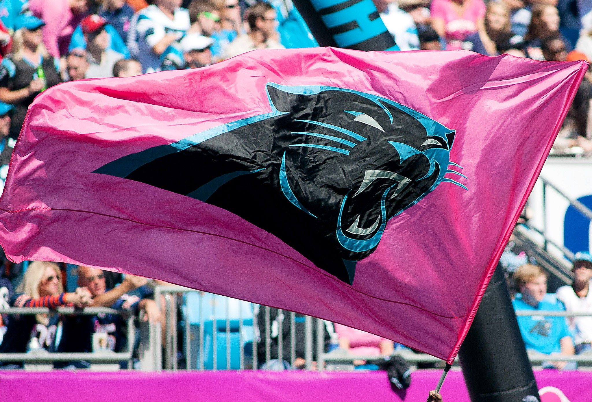 Carolina panthers backgrounds for widescreen free sharovarka carolina panthers backgrounds for widescreen free voltagebd Choice Image