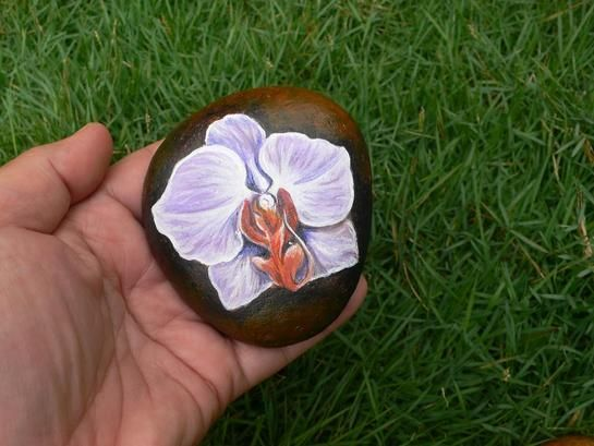 pictures insects painted on rocks   Rockpainting - Flower 0019 - Canvas of Stones