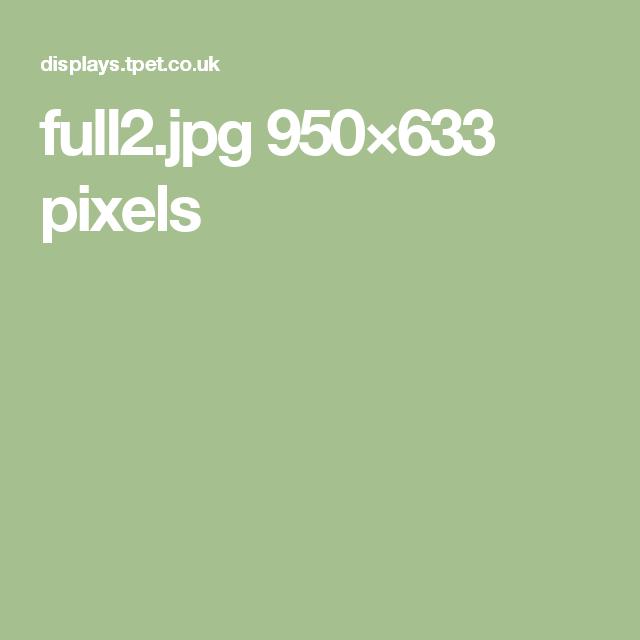 full2.jpg 950×633 pixels