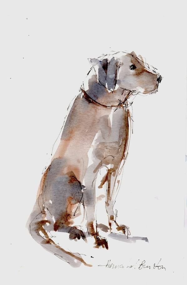 Watercolor Wispy Dog Perhaps Even A Chocolate Lab By Annabel