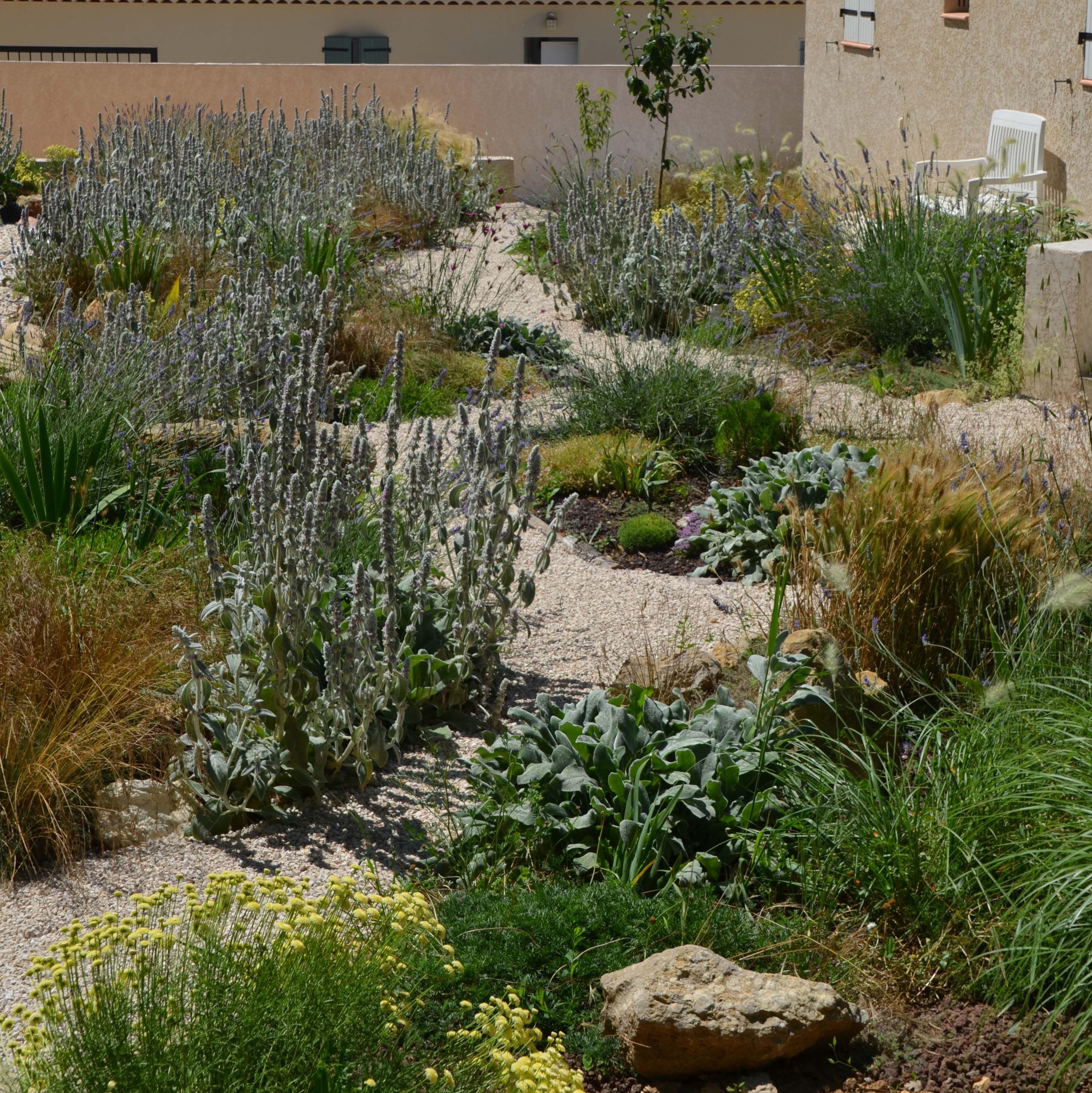 Jardin sec sur gravier, installé sur une zone d\'épandage en ...