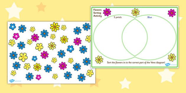 Venn Diagram Flower Sorting Activity Venn Diagram Venn Diagram
