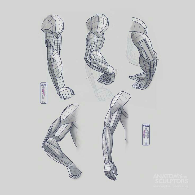 Pin by JL Straw on Art Ref - Arms | Pinterest | Arms