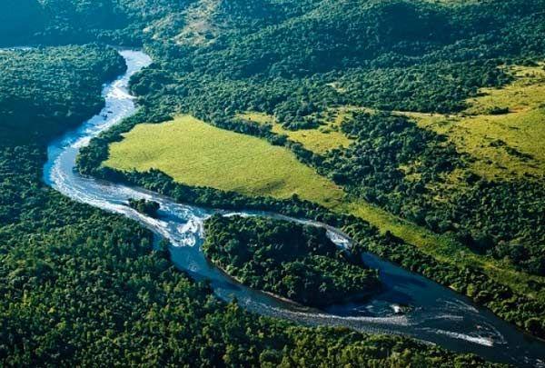 Amazonia Abiove Apoia Que O Desmatamento Seja Monitorado Por Satelite Com Imagens Mata Atlantica O Desmatamento Floresta Amazonica