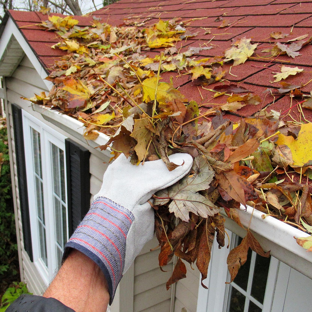 Fall Will Be Here Before You Know It Remember To Dÿ Keep Your Gutters Clean Free Of Debris Dÿ Get Your Roof Ins In 2020 Cleaning Gutters Rain Gutters Homeowner