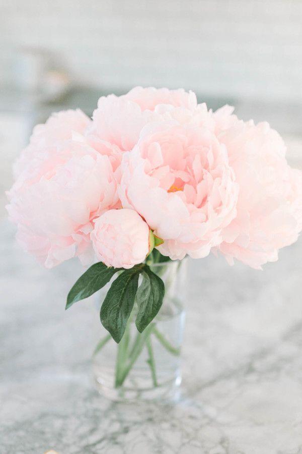 Картинка цветы пионы нежные, открытки днем