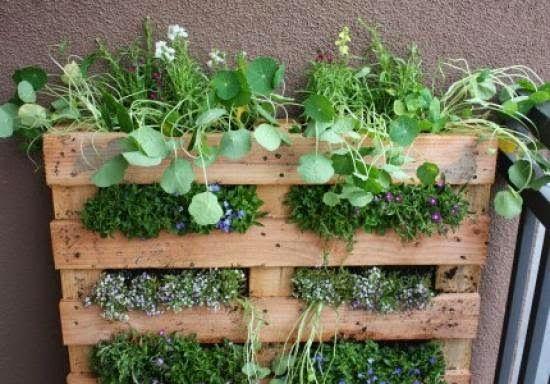 TU SALUD Como hacer un jardin vertical en palet Garden
