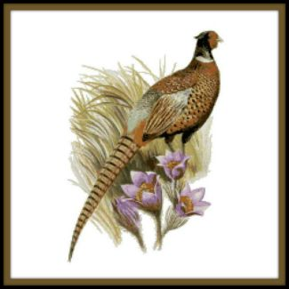 south dakota state bird and flower counted cross stitch pattern ring necked pheasant and