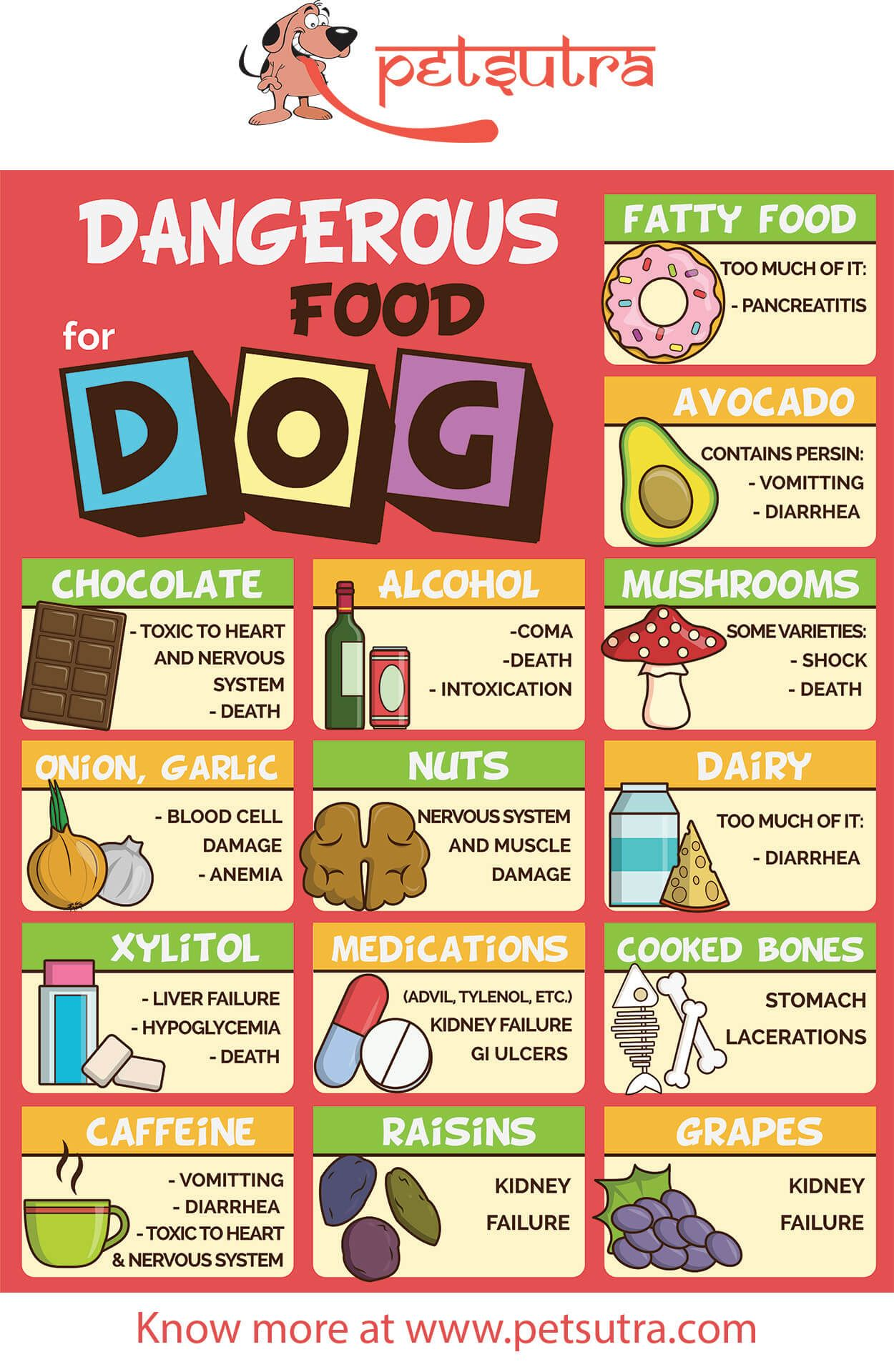 14 Dangerous Food For Dogs Food Dogs Cant Eat Dangerous Foods