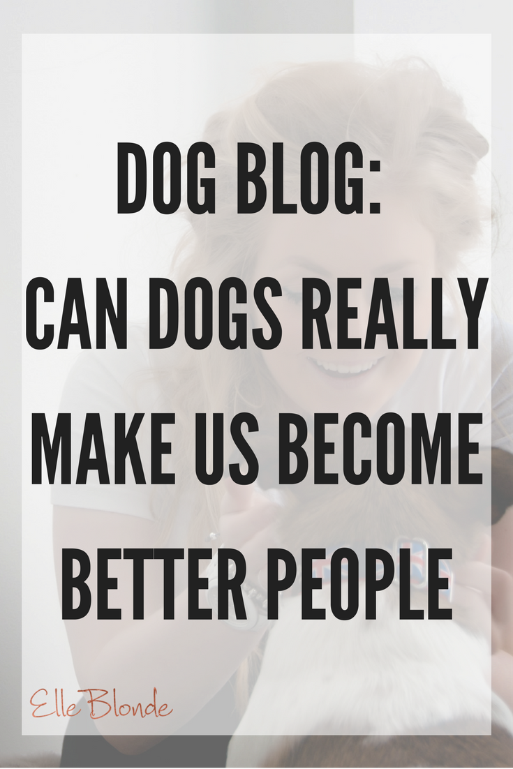 I Love My Dog Quotes Dog Blog My Best Friend & Why We Should All Take Note Of Our Four