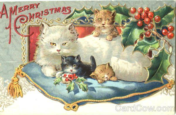 A Merry Christmas Cats Postmark/Cancel: 1909