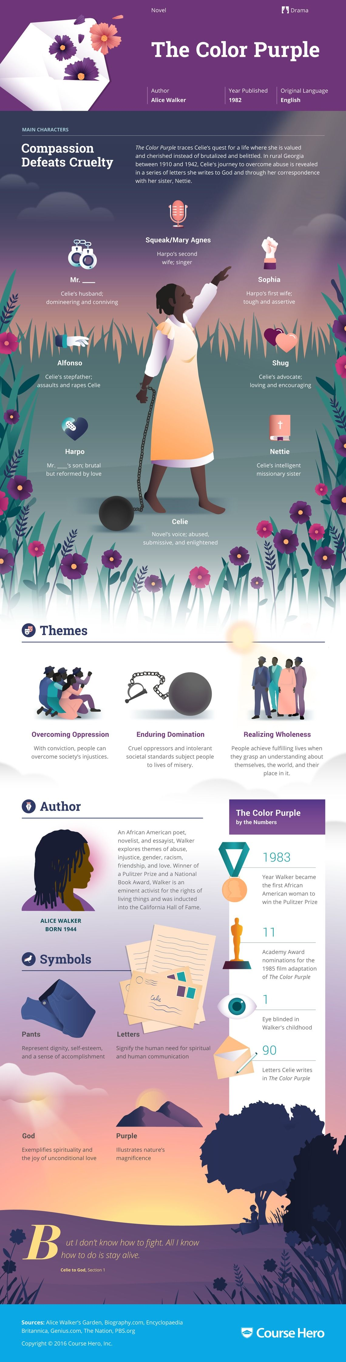 the color purple infographic course hero literature the color purple infographic course hero