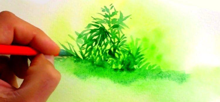 8 Watercolor Techniques For Beginners Avec Images Technique