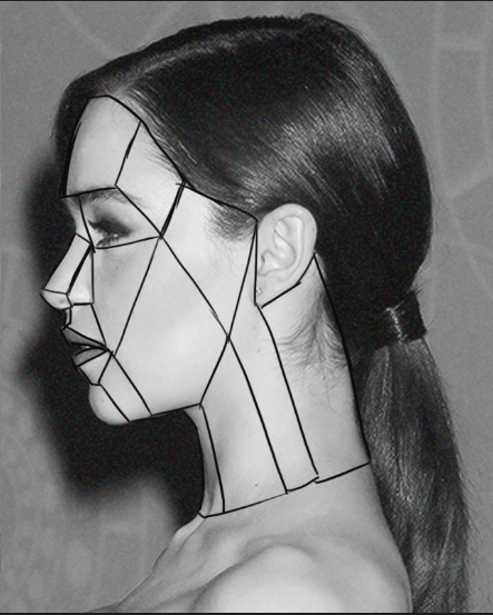 side view face planes study reference images celebrity female head