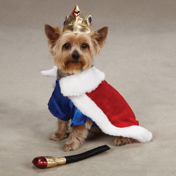 Small Dog Costume Chihuahua Maltese Yorkie Toy Dog King Costume