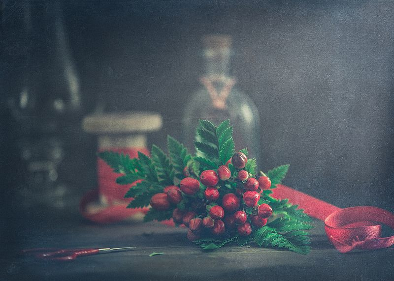 Red berries   by Ro Cafe #winter #holidays #crafting #christmasberries #seasons #itsapinterestinglife