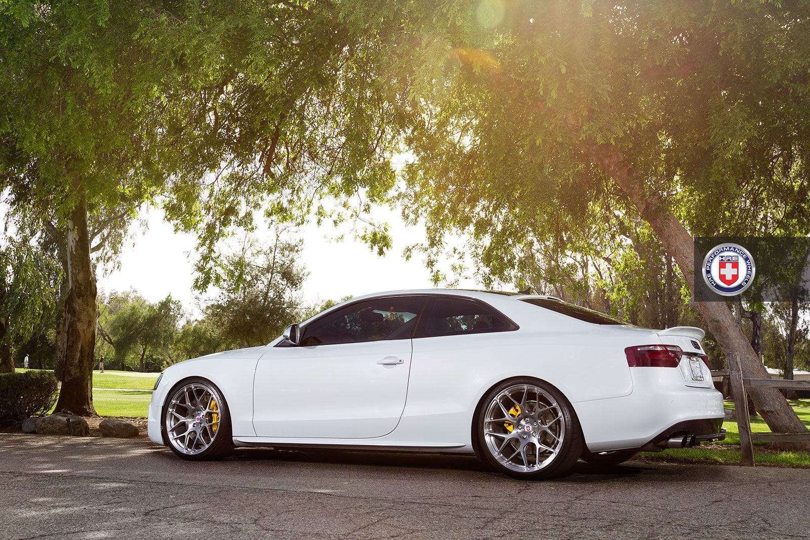 Automotive connoisseur group execstudio hre wheels c97 competition - Female Owned Audi S5 On Hre P40sc In Brush Tinted