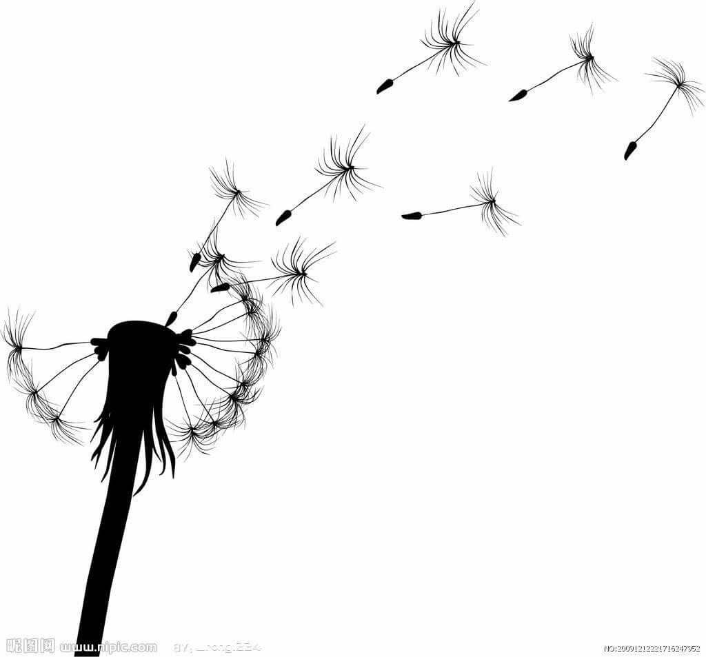 Pin By Laurie Gary Hall On Stuff Laurie Likes Dandelion Dandelion Tattoo Seed Tattoo