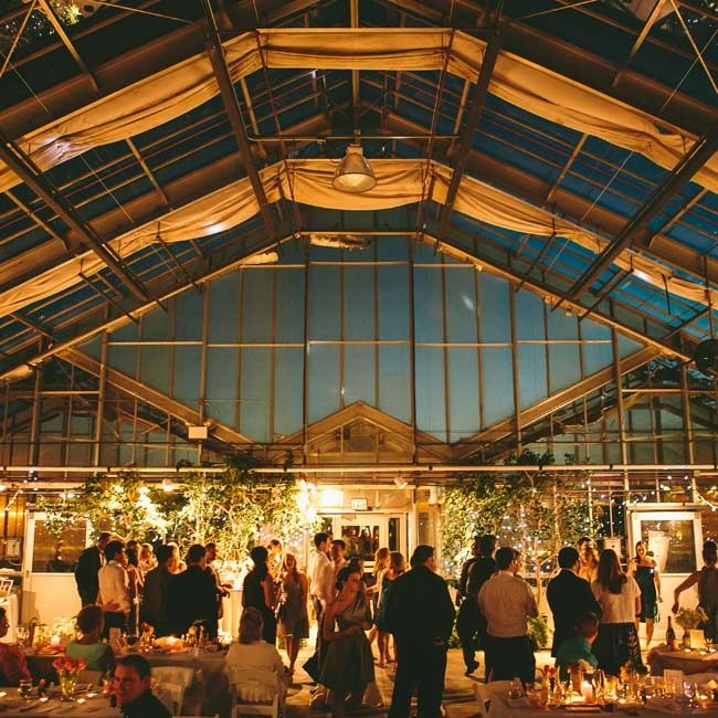 The Reception Was Held Inside Conservatory At Msu Horticultural Gardens Bistro Lighting And Michigan Wedding Venuesdetroit Weddingmichigan