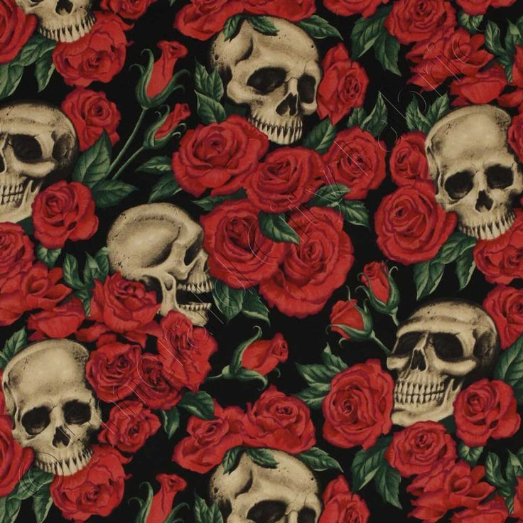Hd Skulls With Roseswallpapers - Google Search