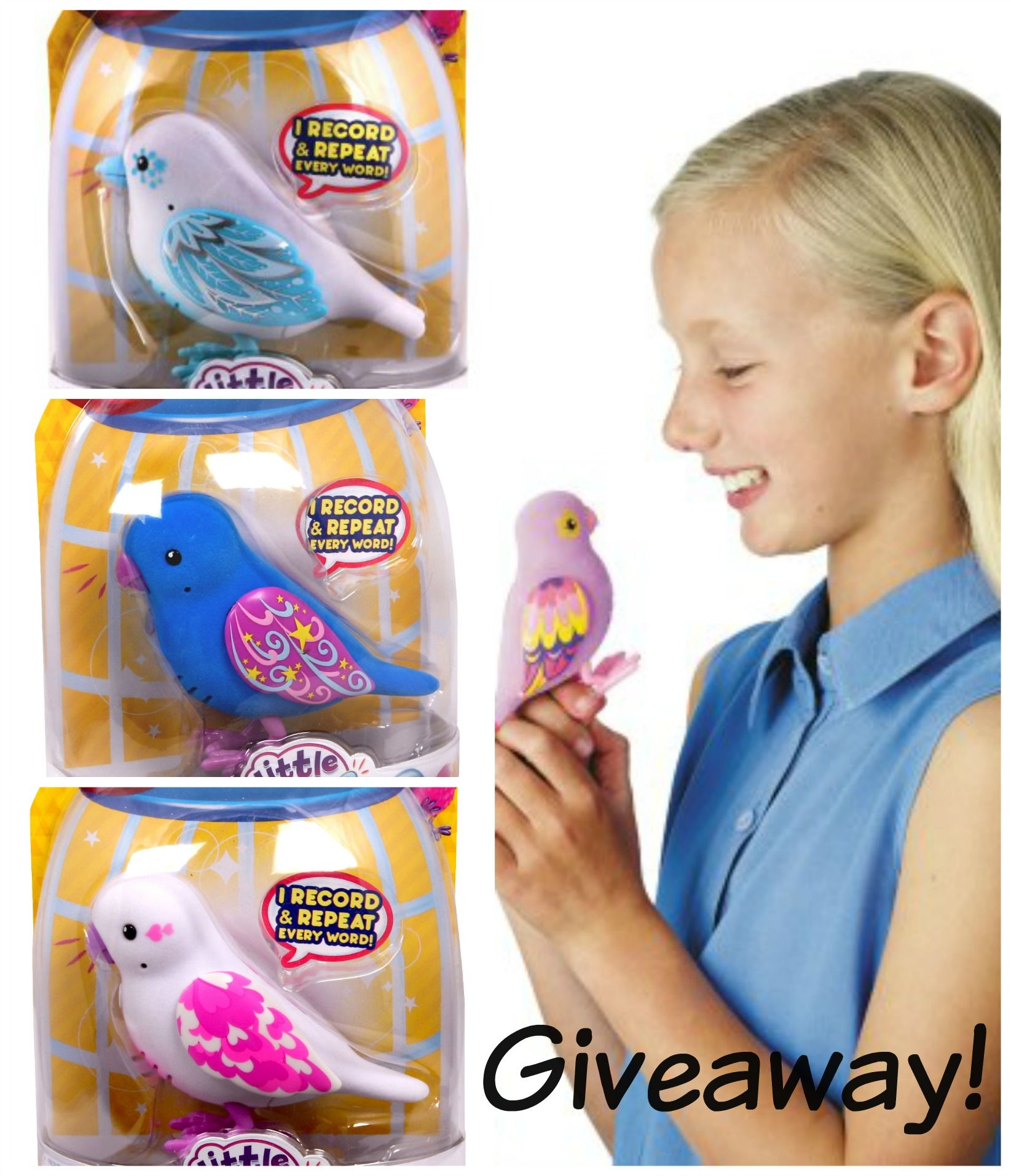 Family fun with Little Live Pet Bird Giveaway Little