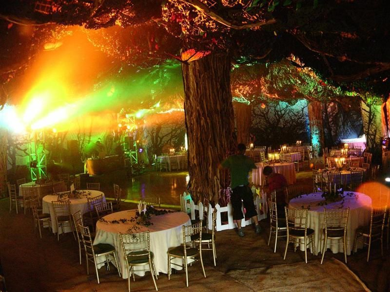 Enchanted forest venue decor for Enchanted gardens wedding venue