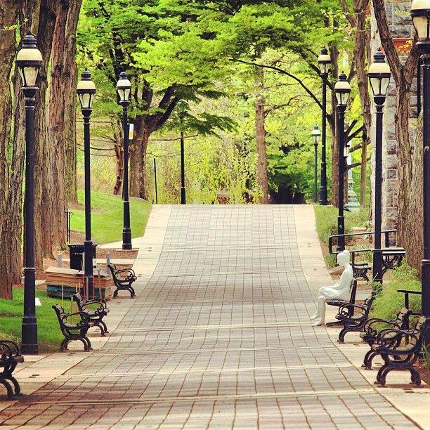 Lehigh University University College Campus