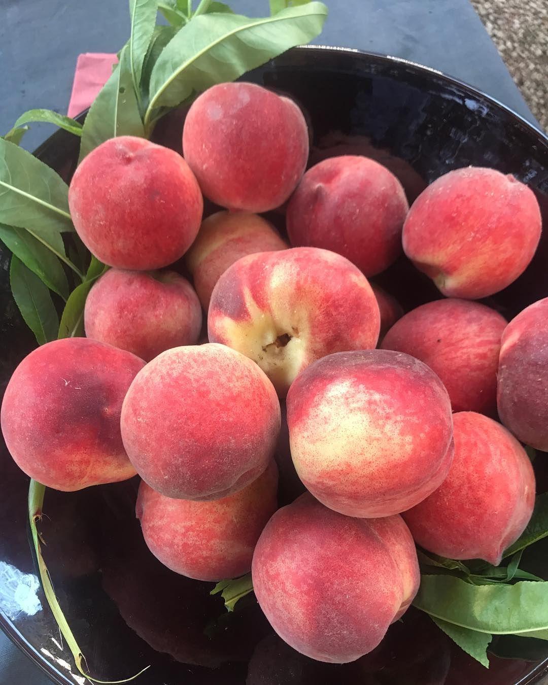 Petitsplatsenequilibre Frutas