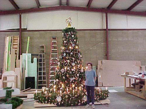 Growing Christmas Tree For The Nutcracker Tree Christmas Tree Christmas