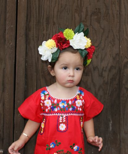 traditional costumes of mexico | National Costumes | Pinterest ...