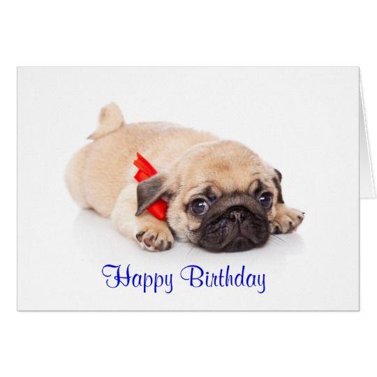Pug Puppy Dog Happy Birthday Card