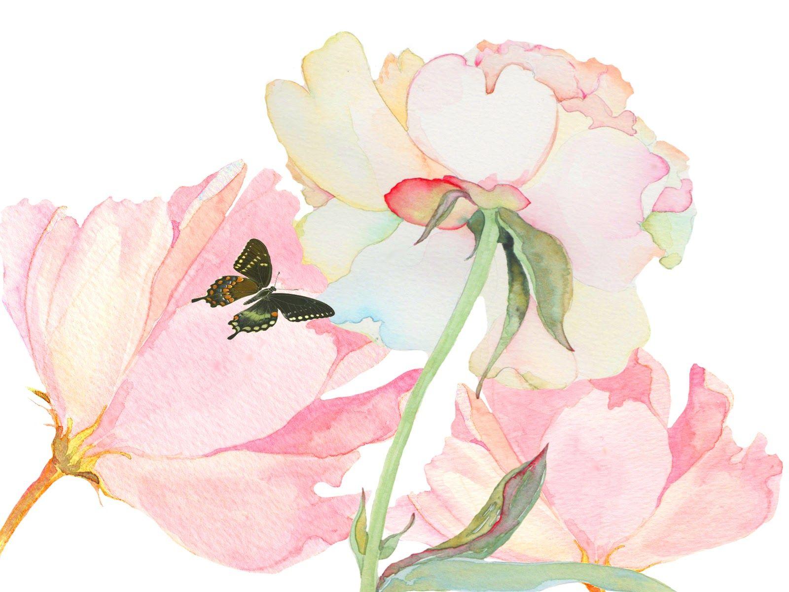 Deep cove flowers Water colour clipart Pinterest