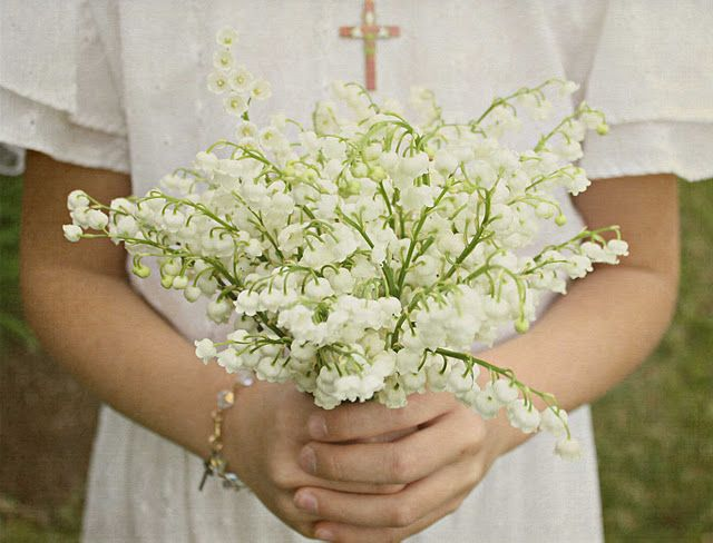 Lily of the Valley ... Maiglöckchen ... Muguet ... a beautiful scent in any language
