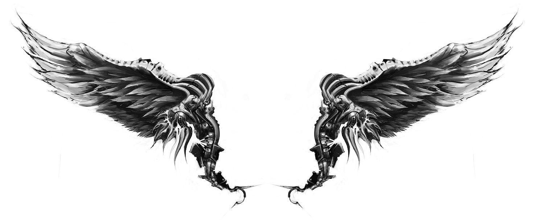 Ailes ange cybern tique t a t t o o pinterest aile ange ailes de poulet et anges - Tatouage aile d ange homme ...