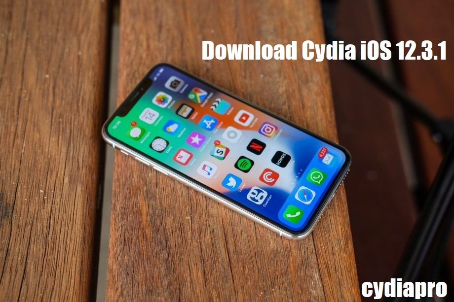 Download Jailbreak for iOS 12.3.1 running devices (With