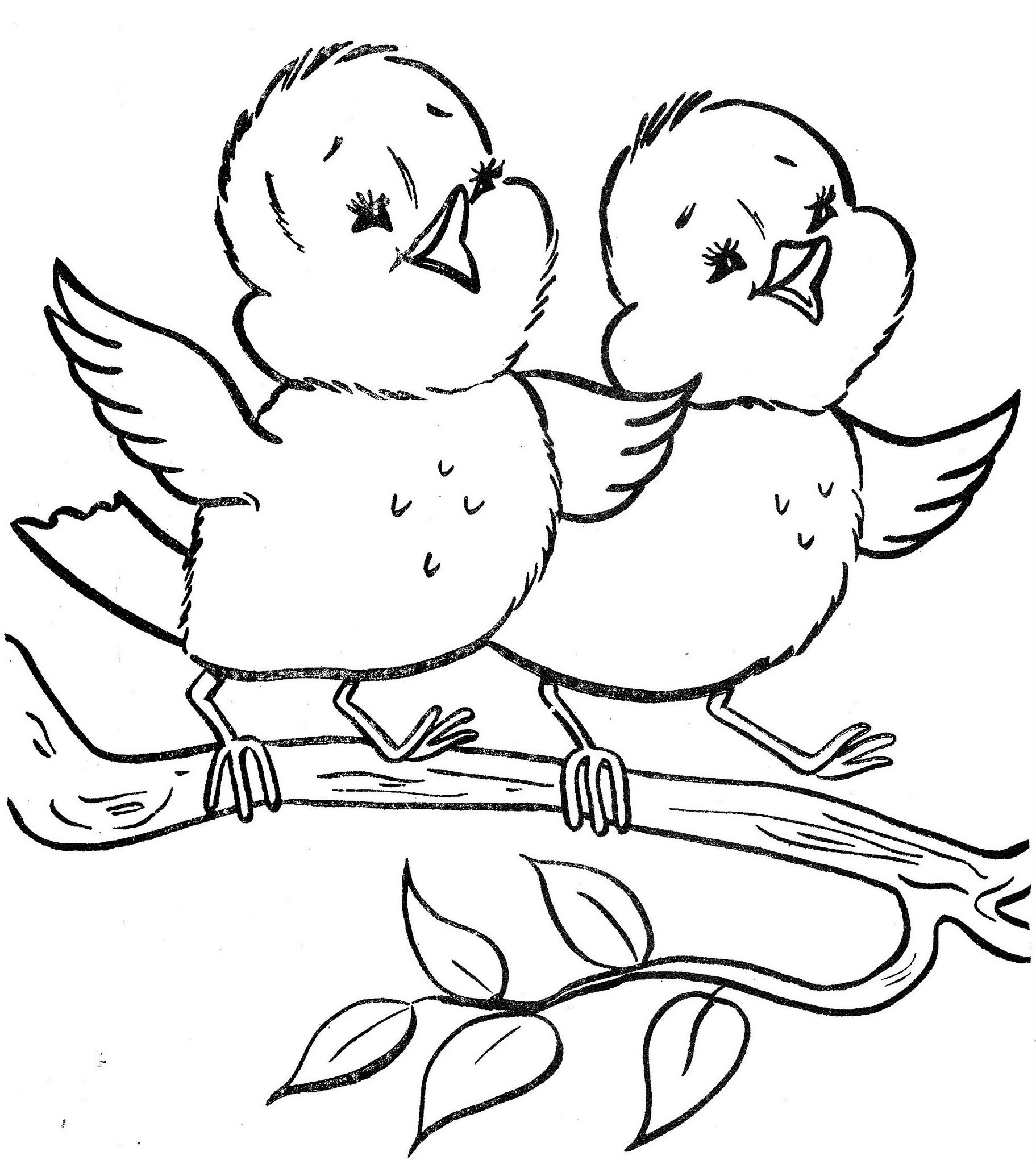 Bonnie A Book To Color birds