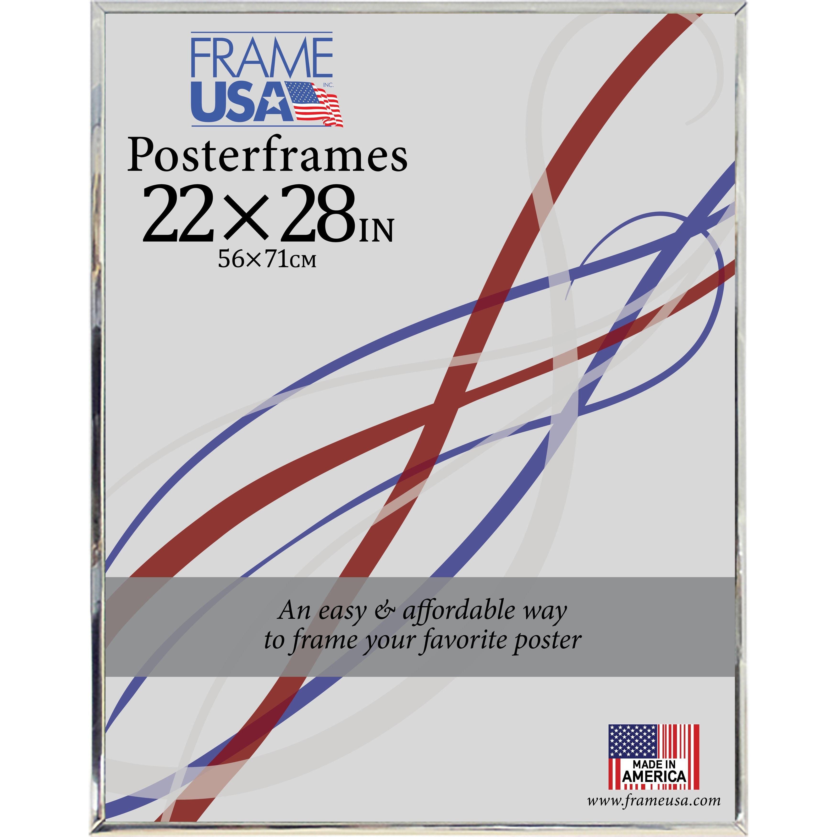 USA Hardboard Poster Frame (22 x 28-inch Image Size) (Silver, 22x28 ...