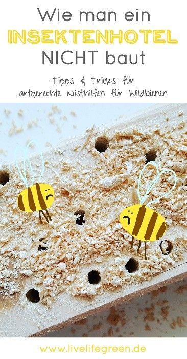 Tipps für ein artgerechtes Insektenhotel oder wie man eine Nisthilfe für Wildbienen und Co. NICHT baut | livelifegreen