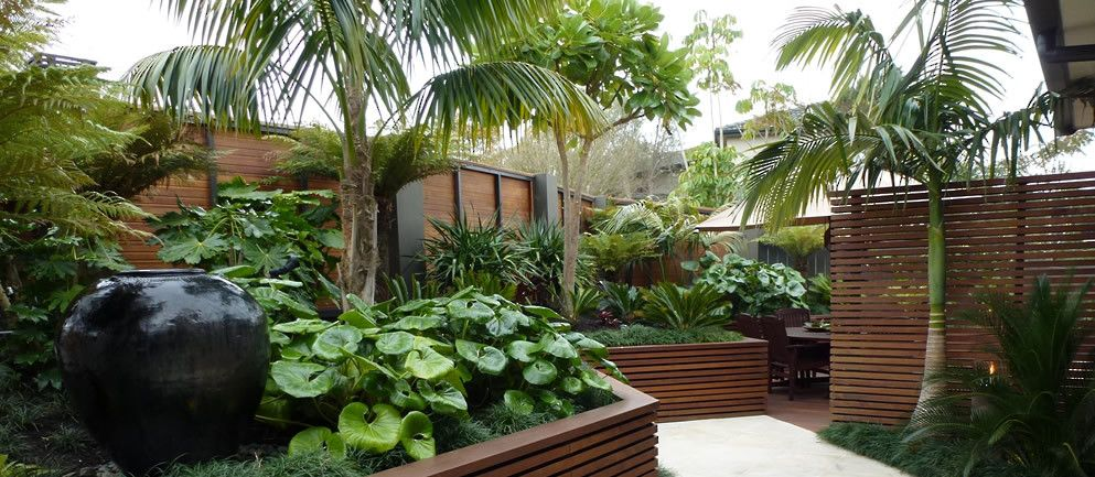 Tropical garden auckland google search garden for Small garden designs nz