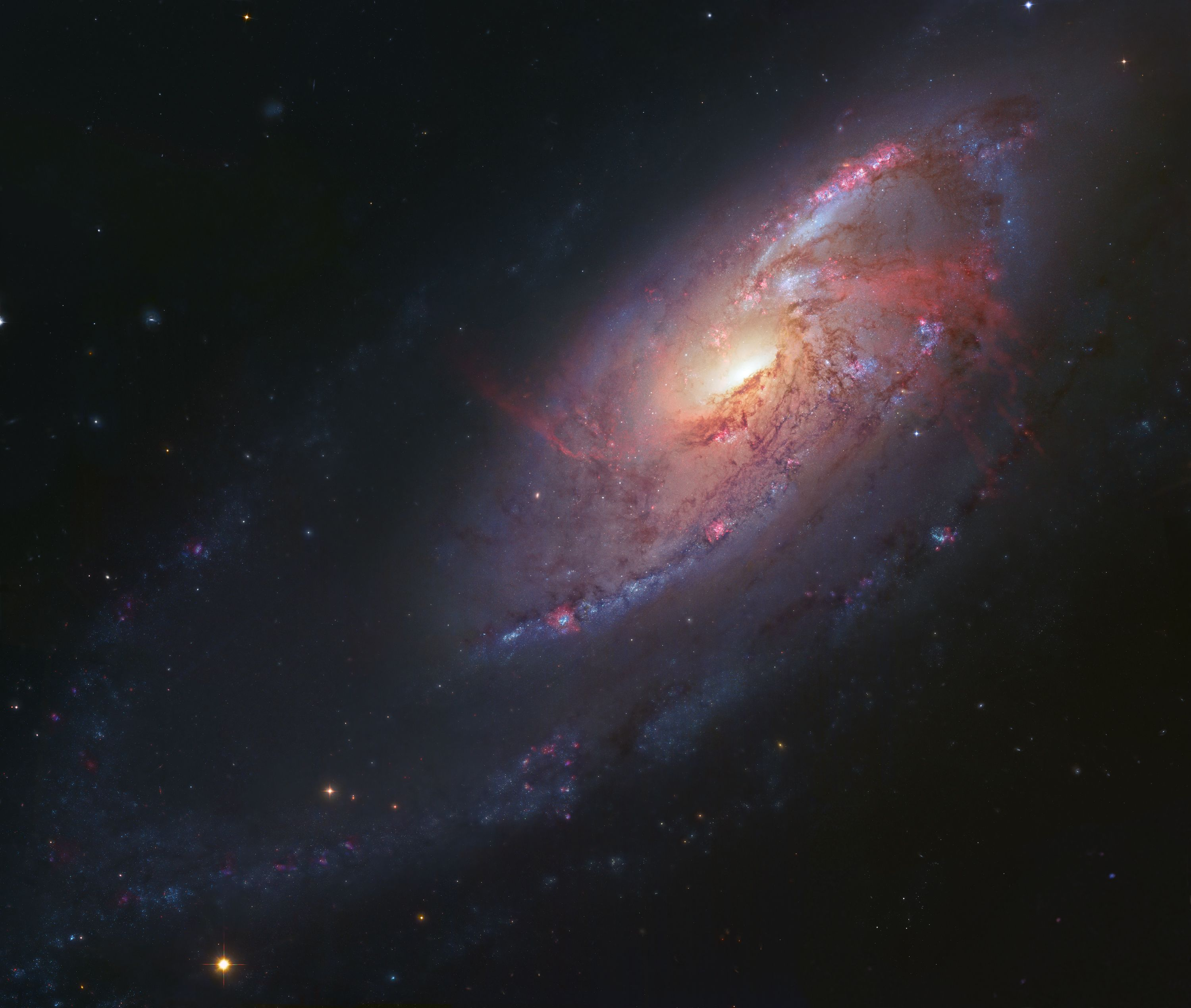 Data from various Hubble instruments and ground-based astrophotography are mashed up in a stunning view of spiral galaxy M106