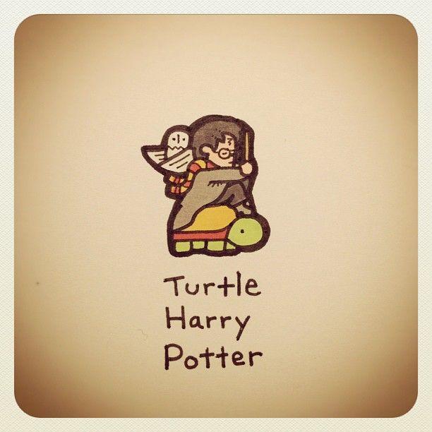 Turtle Harry Potter Turtleadayjuly Turtlewayne Webstagram Turtle Drawing Cute Turtle Drawings Turtle Art