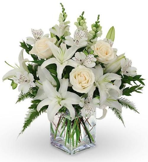 12 White Roses Casablanca Lilies Snapdragons White Flower Arrangements Funeral Flower Arrangements Flower Arrangements