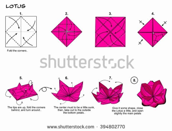 Origami Rose Pattern Luxury Origami Traditional Flower Lotus Diagram