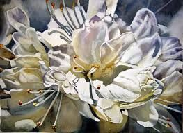 linda baker watercolor - Google Search