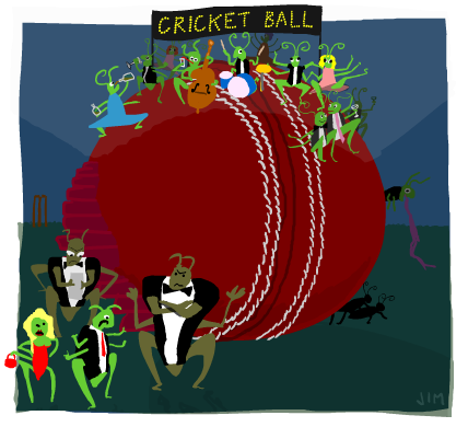Cricket, the Word of the Month by Gymglish.com | Online Language lessons